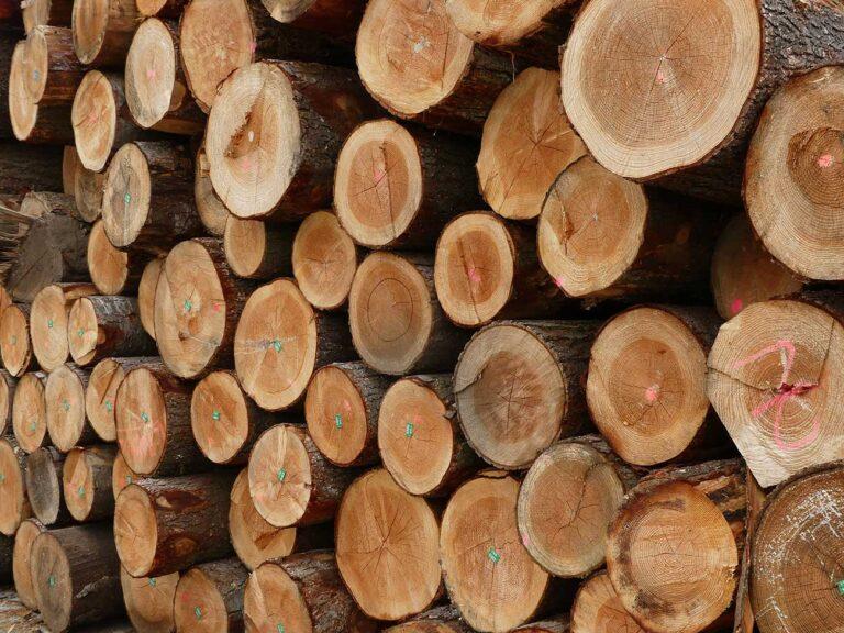 Économie : Le prix du bois flambe