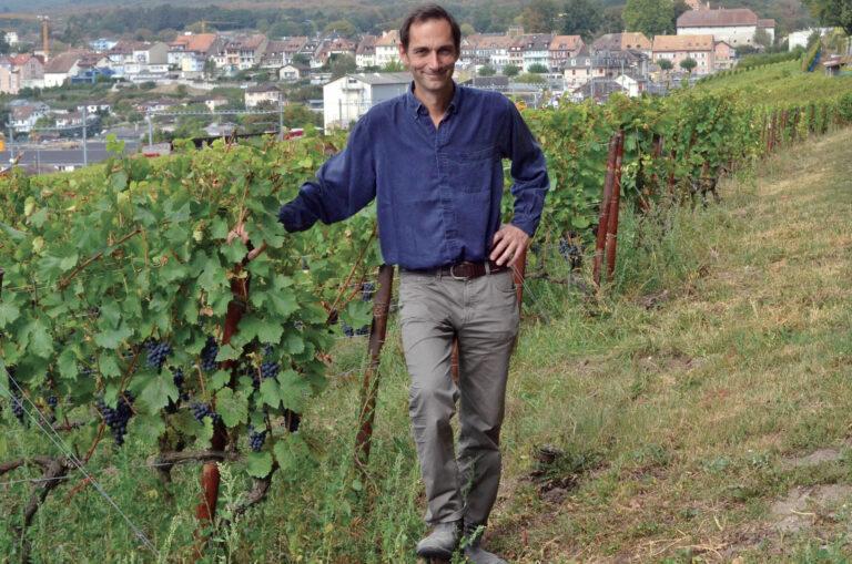 Le vignoble des Côtes de l'Orbe s'affirme année après année
