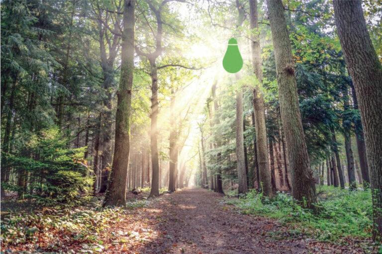 Le Cleantech: une niche, une philosophie