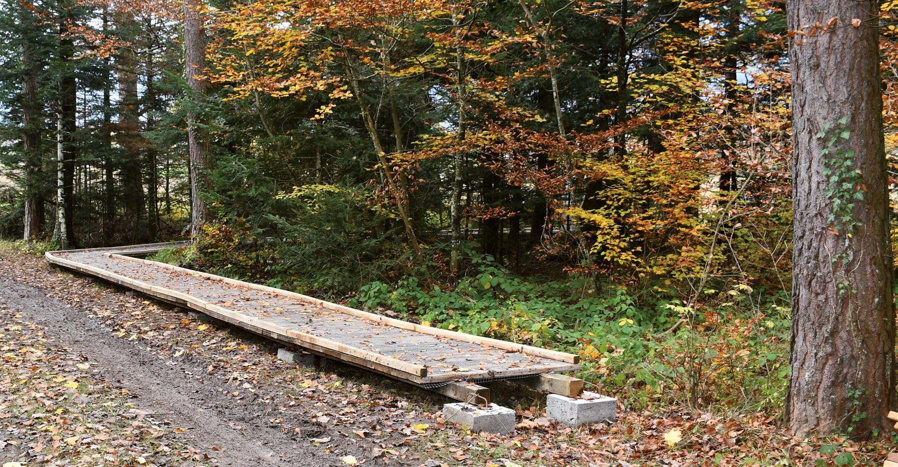 Création d'un Sentier handicap et Nature : Les travaux ont débuté