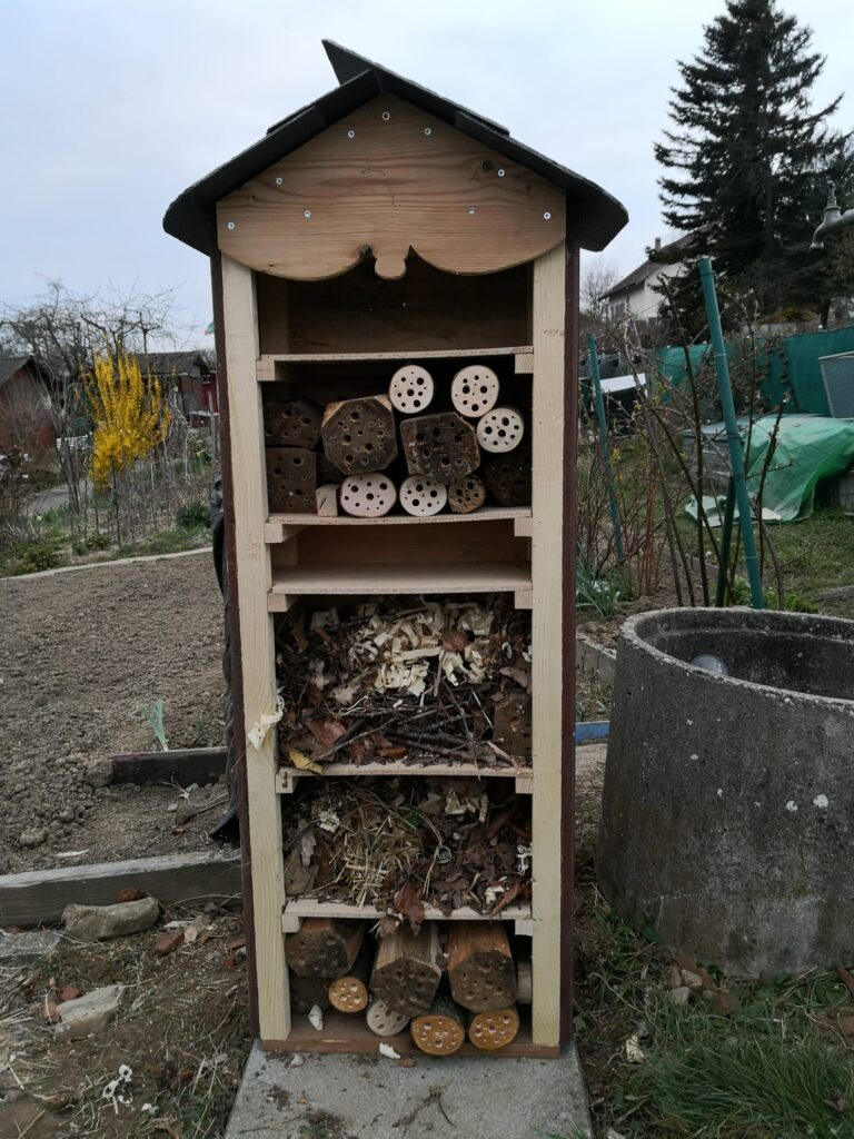 Environnement  Favoriser l'habitat des insectes utiles